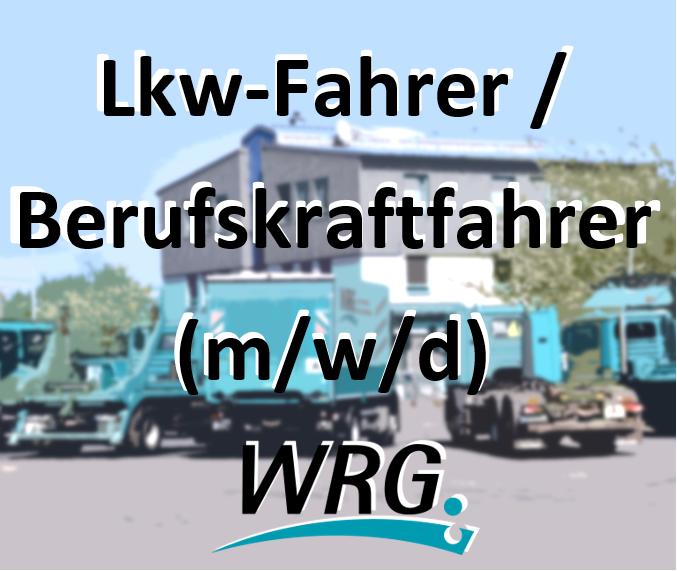 Lkw-Fahrer / Berufskraftfahrer (m/w/d)